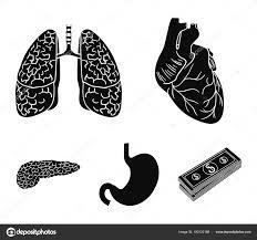心臓肺胃膵臓人間の臓器はブラック スタイル ベクトル シンボル