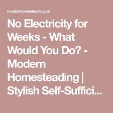 best life out electricity ideas house  no electricity for weeks what would you do modern homesteading stylish self sufficient living homesteading city to country city and country