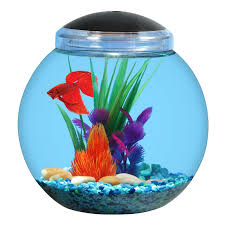 Details About Aqua Culture 1 Gallon Globe Fish Bowl With Led Light