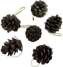 6pcs 4 5cm decorations pine cones pendants pure natural pine cones tl182 souq uae