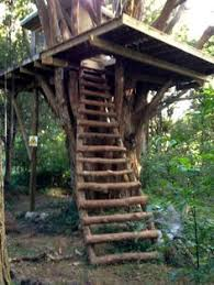 Image Wooden Simple Tree House Diy Tree House Tree House Plans Cool Tree Houses Pinterest Pin By Lee Talbott On Tree Houses In 2019 Pinterest Tree House