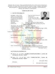 Modelo De Curriculum Vitae Bolivia Modelo De Curriculum Vitae