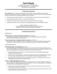 Sales Resume Examples Sales Administrator Resume Objective