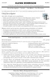 Bank Internal Auditor Resume Samples Examples Template Spacesheep Co