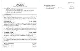 Fake Resume Fake Resume Resume Templates 29