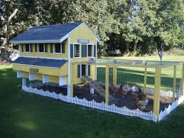 Small Picture Chicken House Design Nz Chicken Coop Design Ideas