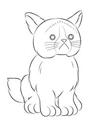 Disegno Di Gatto Scontroso Webkinz Da Colorare Disegni Da Colorare