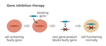 what is gene therapy facts org gene inhibition therapy