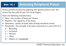 Peripheral Pulses Charting Image Result For Assessment Of Pulse Strengths For Nursing