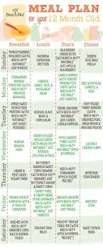 Baby Food Chart After 12 Months Meal Plan For 12 Month Old Beech Nut