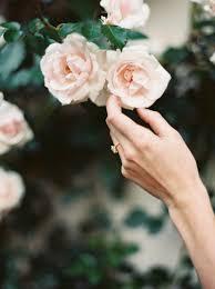 <b>Summer</b> Robbins <b>Flowers</b>: Bend Oregon <b>Floral</b> Design Studio