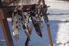 Image result for snowshoeing in gatineau park in winter