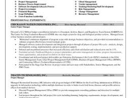 Executive Resume Samples Free Or Project Finance Manager Resume