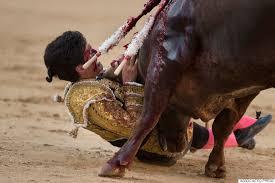 bull fighting injuries. Brilliant Fighting Las Ventas To Bull Fighting Injuries F