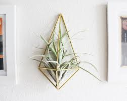 gold geometric wall mounted air plant holder idea 14 ingenious ideas of wall mounted plant