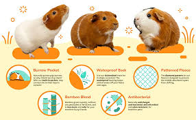 Guinea Pig Urine Chart Guineadad Guinea Pig Fleece Cage Liner Burrowing Pocket Sleeve Extra Absorbent Antibacterial Bamboo Waterproof Available Various Cage Sizes