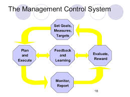 management control system measure and report on non financial performance 18 18 the management control