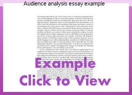 audience analysis example audience analysis essay example term paper academic service