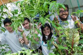 Rice University Engineering Students Created A Produce Cultivation Machine  At The Oshman Engineering Design Kitchen On Campus. From Left: Jared  Broadman, ...