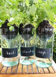 cool diy self watering planter using a wine bottle by diy projects at s