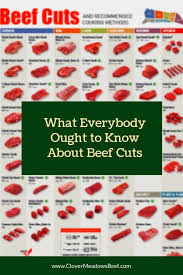 What Everybody Ought To Know About Beef Cuts Clover