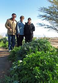 las milpitas an urban farm in tucson az invests in community sustaility