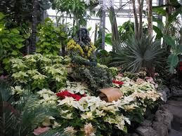 large size of botanical gardens now around garden metro station to pari chowk for