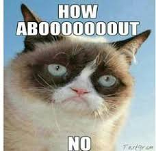 tard the grumpy cat no | New Proposed Retarded Utah Law States You ... via Relatably.com