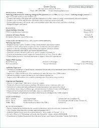 Chronological Order Resume Example Chronological Resume Template ...