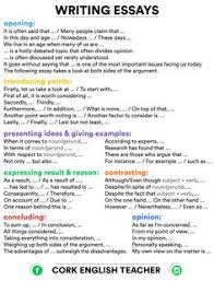 transition words these could be useful in developing science  writing tips and practice writing expressions opinion essay and
