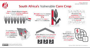 corn exports threatened by drought