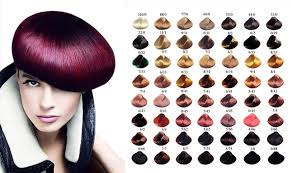 Dreamron Hair Color Chart Free Sample Private Label Ash Blonde Hair Color Cream Dye Salon Use Dreamron Hair Color Buy Ash Blonde Hair Color Dreamron Hair Color Private Label