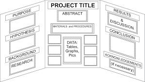 Science Project Labels Printable Science Project Board Fold Project Board Fold Presentation Board