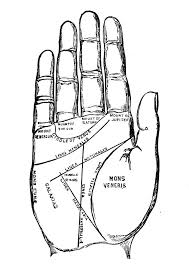 Palmistry Chart 1885 1