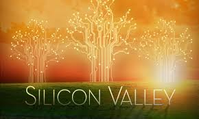 Image result for silicon valley