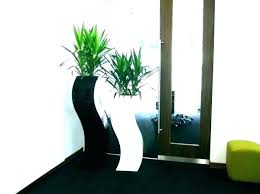 tall plant tall plant stand indoor modern plant stands indoor plant stand indoor plant stand modern tall plant
