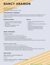 Great Resume Format Examples Best Resume Format Examples] 24 Images Download Resume Format 22