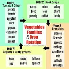 Crop Rotation Chart 35 Best Crop Rotation Images In 2019 Crop Rotation