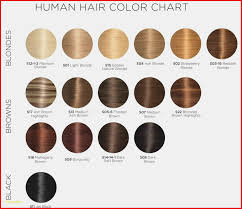 Inoa Hair Color Chart Lajoshrich Com