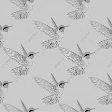 シームレスなハミングバードコリブリ手ビンテージスタイルの背景を描画