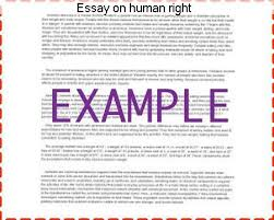 essay on human right research paper writing service essay on human right human rights are those rights which a person should have in