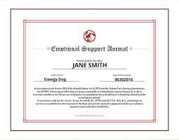 How To Get A Doctors Note For An Emotional Support Dog Emotional Support Animal Id Service Dog Certifications