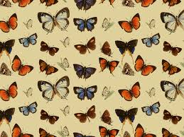 Butterfly Pattern Magnificent Seamless Vintage Butterfly Pattern DecorAndOrnaments Textures