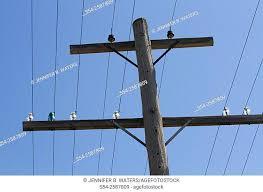 glass insulators on a telephone pole