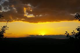 Resultado de imagen para horizonte amarillo