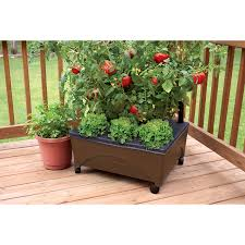Shop Planters Stands Window Boxes At Lowes Com