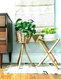 indoor pot plant stands nz planter