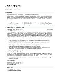 Small Business Owner Resume Small Business Resume Template Small