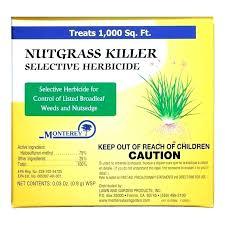 Nutsedge Herbicides Yellow Nutsedge Killer Getirelim Co