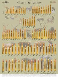 Deer Rifle Caliber Chart Mohamed Mbebo43 On Pinterest
